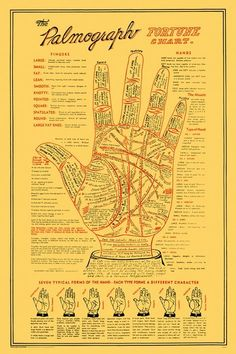 Palmograph #51262