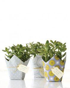 Plant Gift Wrap from scrapbook paper - Martha Stewart Crafts