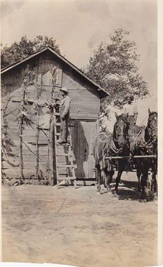 My great grandfather (pasted today) and his brother in Crawford Kansas. Pre 1930's