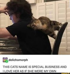 Found on iFunny Cute Funny Animals, Funny Cats, Stupid Memes, Funny Memes, Animals And Pets, Baby Animals, Animal Pictures, Funny Pictures, Animal Jokes