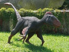 Perhaps the most unusual thing about Utahraptor, aside from its size, is when this dinosaur lived: about 125 million years ago, during the early Cretaceous period. Most well-known raptors (like Deinonychus and Velociraptor) flourished toward the end of the Cretaceous period, more than 50 million years after Utahraptor's day had come and gone, a reversal of the usual pattern in which small progenitors give rise to plus-size descendants.
