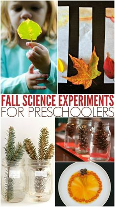 These fall science activities are perfect for learning about fall, leaves, and pumpkins. Use nature and common kitchen ingredients to learn about science and complete some awesome fall science experiments. Science Experiments For Preschoolers, Preschool Science Activities, Autumn Activities For Kids, Stem Science, Preschool Themes, Science For Kids, Science Projects, Preschool Centers, Preschool Crafts