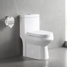 DeerValley Dual-Flush Elongated One-Piece Toilet (Seat Included) Bathroom Layout, Modern Bathroom Design, Small Bathroom, Compact Bathroom, Bathroom Stuff, Bathroom Ideas, Bathrooms, Small Toilet, New Toilet