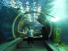 Inside i will go here!