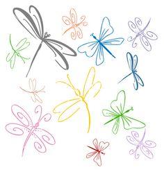 Dragonfly set vector