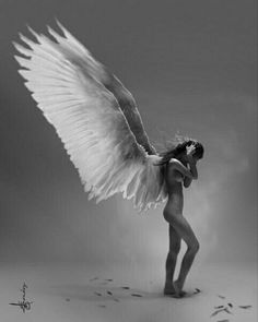 Angel with white wings Angels Among Us, Angels And Demons, Fallen Angels, Angel Images, Angel Warrior, Ange Demon, Angel And Devil, Art Pictures, Photos