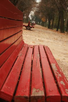 the red bench in the fall | Fotografia de AnaA | Olhares.com