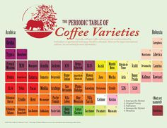 Periodic Table of Coffee Varieties – The Coffee Co-Mission Very interesting and nice to know for coffee addicteds Coffee Tasting, Coffee Drinks, Coffee Shops, Coffee Lovers, Coffee Maker, Cocoa, Types Of Coffee Beans, Bunn Coffee, Coffee Guide