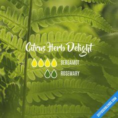 Citrus Herb Delight — Essential Oil Diffuser Blend