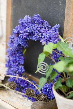 grape hyacinth wreath. Photo: Minna Mercke Schimdt