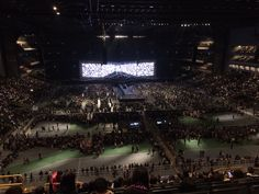Arena!!!