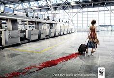36 Social Awareness Posters - World Wildlife Fund (WWF): Don't buy exotic animal souvenirs. Creative Advertising, Social Advertising, Advertising Campaign, Social Campaign, Advertising Ideas, Print Advertising, Guerilla Marketing, E-mail Marketing, Green Marketing