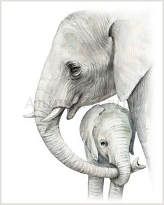 Mother and Baby Animal Art Safari Nursery Animal Prints Set Baby Elephant Drawing, Elephant Sketch, Mom And Baby Elephant, Baby Animal Drawings, Baby Drawing, Elephant Art, Drawings Of Elephants, Elephant Watercolor, Baby Zebra