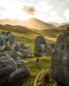 Walk among stone giants. New Zealand Photo by Alexandre Gendron Photography