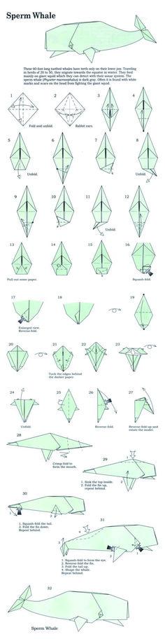 sperm whale origami