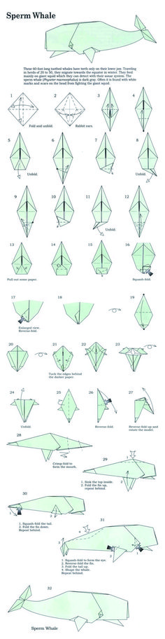 Ballena / origami, papel, papiroflexia
