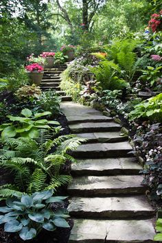 The muted palette of the stone treads provide just the right contrast to the rich tones within the garden