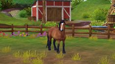 Mon dada sur star stables Star Stable Horses, Horse Stables, Game, Stars, Diy, Animals, Shopping, Pegasus, Horse Barns