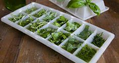 Come conservare le erbe aromatiche in freezer