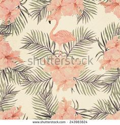 Colorful Pattern Flamingo Shutterstock.com