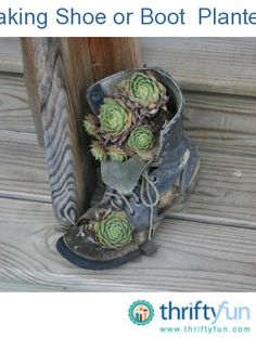 This is a guide about making shoe planters. Old shoes make interesting planters for your yard and garden.