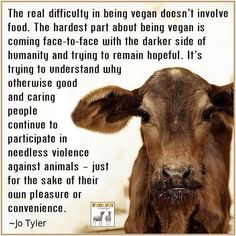 Please watch www. Cowspiracy.com