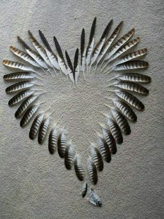 Heart of feathers ~
