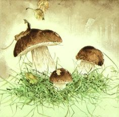 4x Single Table Party Paper Napkins for Decoupage Decopatch Three Mushrooms