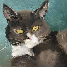 """Daily Paintworks - """"Grey cat"""" - Original Fine Art for Sale - © Philine van der Vegte"""