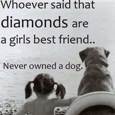 Amen, I have the best dog in the world she knows my every thought and emotion.