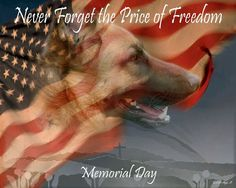 memorial day animal pictures