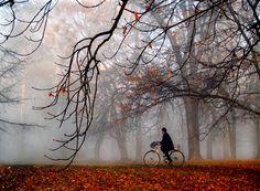 MORNING COLOURS by Jasmina Gorjanski, via 500px