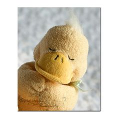 Praying Yellow Duck Stuffed Animal Nursery by CrystalGaylePhoto,