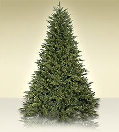 75 ft Treetime Flagstaff Fir Artificial Christmas Tree with Clear Lights * See this great product.
