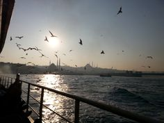 #istanbul #vapur #marti