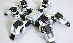 This robot walks in a way that is faster, more efficient than what insects have evolved