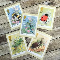 Insects vintage postcards, set of Post Office Postage Stamp cards, PHQ picture cards, Bush Cricket and Dragonfly, Bumble Bee and Ladybird Postcards For Sale, Vintage Postcards, Address Stickers, Picture Cards, Post Office, Vintage Paper, Postage Stamps, Ephemera, Cricket