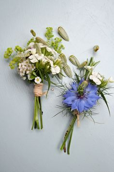 Buttonhole of Brizia, Nigella, Sweet William from Green & Gorgeous.. a touch of blue for the boys?? and the lovely soft mix for the ladies??