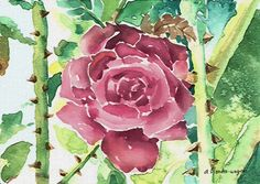 Thorny Rose by Arline Wagner - (description says... 'digital media')  Print available for purchase ---*--- There are graphics programs that will simulate watercolor painting.  Perhaps that is how this was created.  The rose style could be emulated in a painting.  ;)