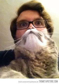 The Cat Beard....HAHAHA...oh come on people, it's funny!