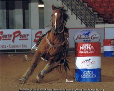 My sister Nancy and I can train horses to run barrels with a rider or without :)! Barrel Racing Horses, Ranch Life, Family Memories, Horse Stuff, Barrels, Rodeo, Connection, I Am Awesome, Action