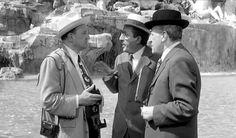 TOTO'-FILM-Totò, Peppino e la... malafemmina, regia di Camillo Mastrocinque (1956) Totò, Peppino e i fuorilegge, regia di Camillo Mastrocinque (1956) Totò, Vittorio e la dottoressa, regia di Camillo Mastrocinque (1957) Totò e Marcellino, regia di Antonio Musu (1958) Totò, Peppino e le fanatiche, regia di Mario Mattòli (1958) Gambe d'oro, regia di Turi Vasile (1958) I soliti ignoti, regia di Mario Monicelli (1958) La legge è legge, regia di Christian-Jaque (1958) -E MOLTI ALTRI FILM-
