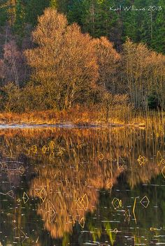 Autumn ~ Loch Dhu, Trossachs ~ Kinlochard, Scotland. Photo: Shuggie!! via Flickr