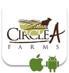 Mobile App...