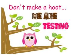 Testing sign can be posted outside classroom door during testing.  *I saw this idea from Kimberly Santana and tweaked it to fit my specific owl...