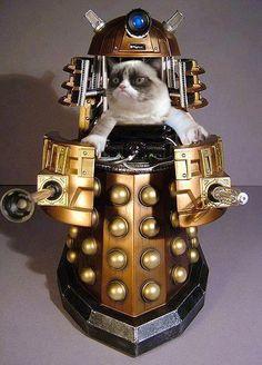 Grumpy Cat - Leader of the Daleks.