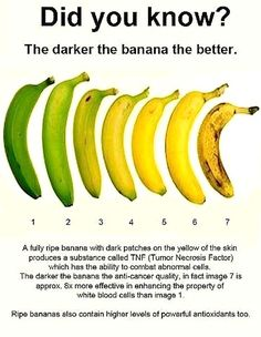 "Showing this to my mom next time she makes fun of my ""dead"" bananas - they're better with brown spots!"