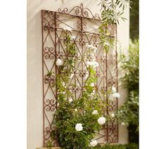 Iron Wall-Mount Gate- I love this for the wall behind the patio I just have to find climbing flowers that love shade