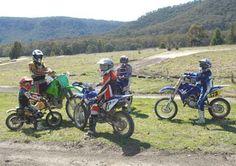 Google Image Result for http://www.hartleyfarm.com.au/images/IMGP5566-2.jpg