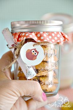Such a cute gift idea! Pumpkin Cookie Recipe and Free Printable at the36thavenue.com